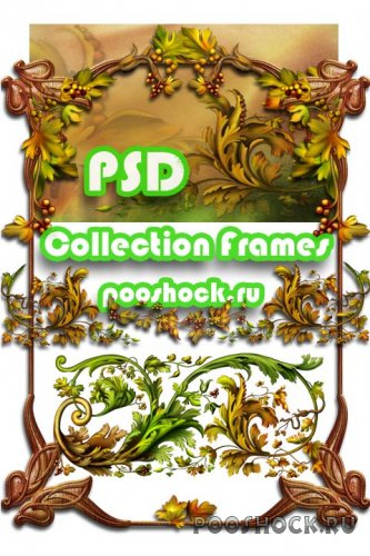PSD Collection Frames