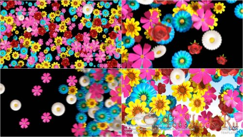Videohive - Flowers Transition Pack