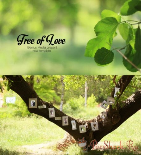 VideoHive - Tree Of Love (.aep)